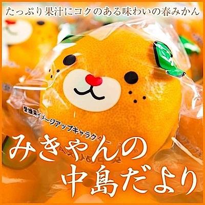 天天果園*日本中島卡通蜜柑原裝盒 x1kg±10% (約12-15入)