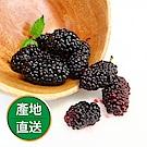 【果物配】手摘桑葚.友善農法(手摘黑寶石/2.4kg)