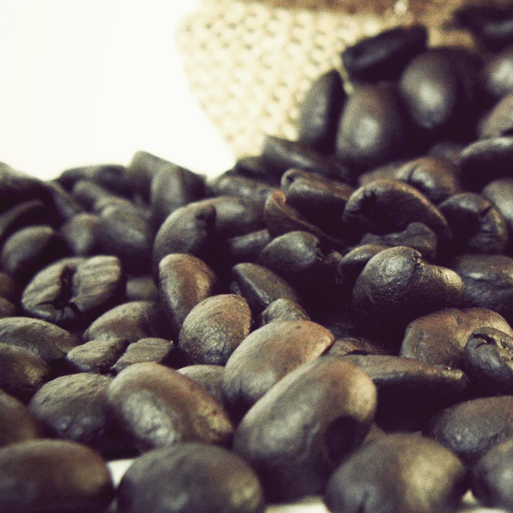 Gustare caffe 精選東帝汶咖啡豆(Maubbessee)半磅