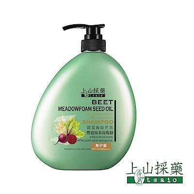 tsaio上山採藥 甜菜白芒花豐盈絲柔洗髮精850ml