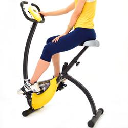 【SAN SPORTS 山司伯特】飛輪式磁控健身車