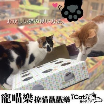 寵喵樂 九宮格貓咪玩具