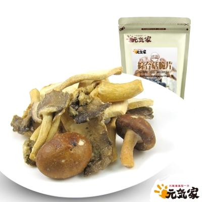 元氣家 綜合菇脆片(100g)