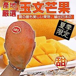 【天天果園】玉文芒果 x10斤 (約7-9入)