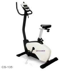 Chanson 數位娛樂立式時尚健身車