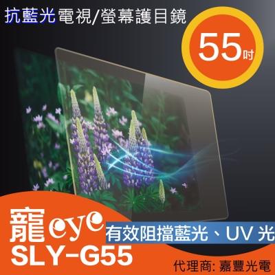 寵eye 55吋 抗藍光螢幕護目鏡 (SLY-G55)