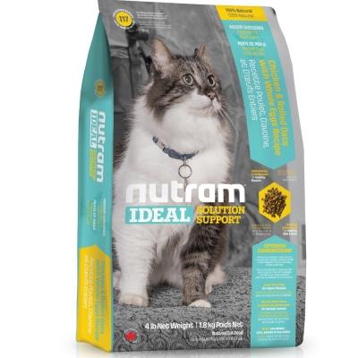 Nutram紐頓 I17室內化毛貓/燕麥雞肉配方 6.8kg【2136】