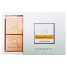 Tilley百年特莉橙花香氛蔬果皂4入禮盒(50gx4入)
