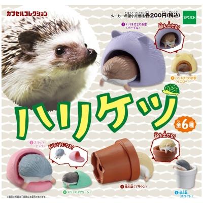 日本正版授權 全套6款 刺蝟 屁屁造型 擺飾 扭蛋 EPOCH