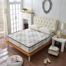 Ally愛麗飯店級高澎度舒柔涼感紗蜂巢式床墊 雙人5尺