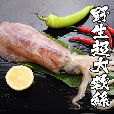 海鮮王 野生超大軟絲 *2隻組( 500-600g/隻 )