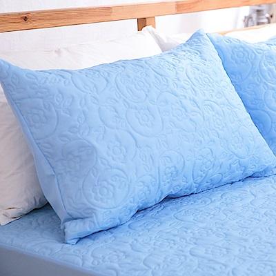 eyah宜雅 吸濕排汗大和防蹣抗菌雙效 信封式枕頭保潔墊2入(王子藍)