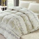 羽織美 品味圖騰 雙人印花天然羽絲絨保暖被