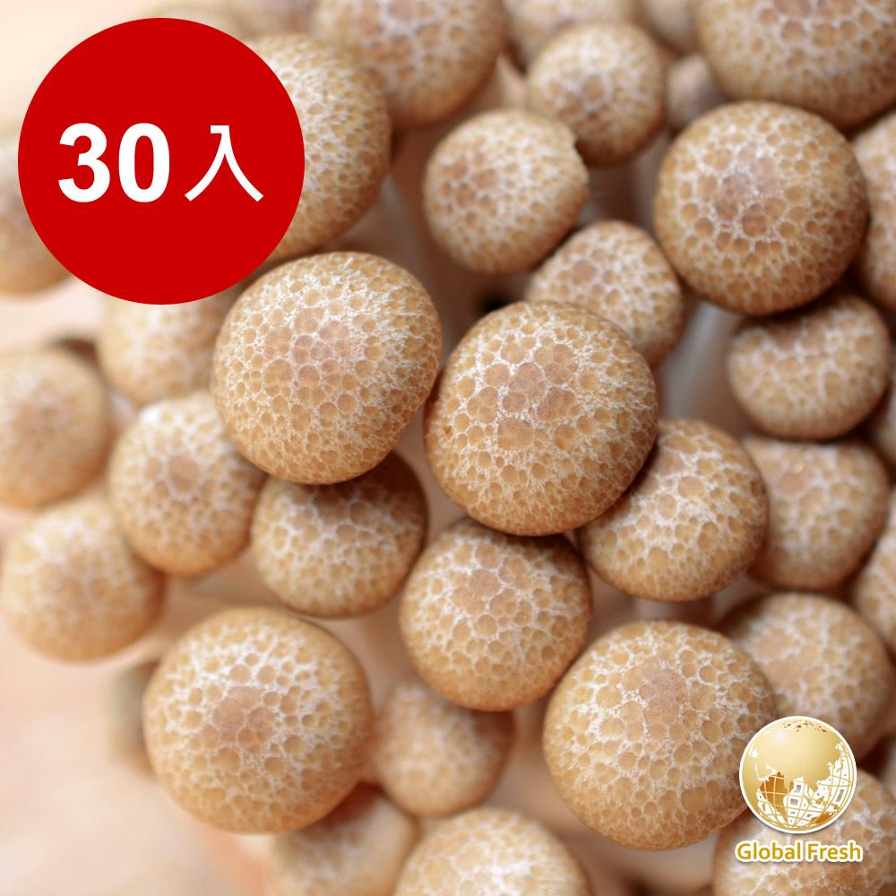 Global Fresh 日本長野鴻喜菇(200g)30包