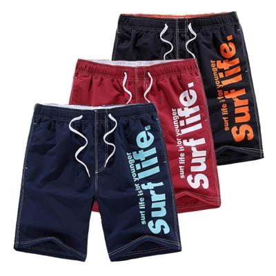 美國熊 音樂際 衝浪運動 繽紛色彩 字母 抽繩 海灘褲