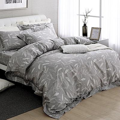 HOYA H Series梵蒂岡 特大四件式500織匹馬棉被套床包組-配加大被套