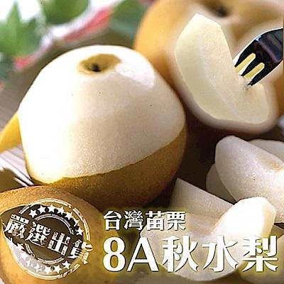 (滿799免運)【天天果園】台灣秋水梨8A(250g/顆) x3顆