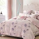 Lily Royal 天絲 加大-六件式兩用被床罩組 俏皮青春
