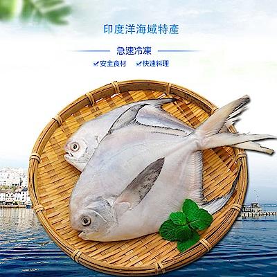 馬姐漁舖 嚴選印度頂級藍帶白鯧魚-2包組(275g/包)