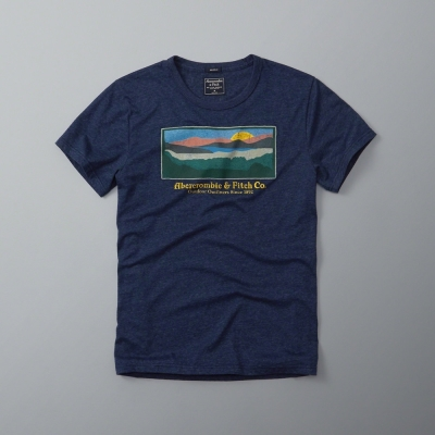 AF a&f Abercrombie & Fitch 短袖 T恤 深藍 096