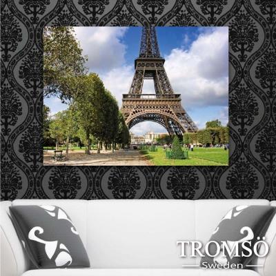TROMSO時尚無框畫-永恆巴黎