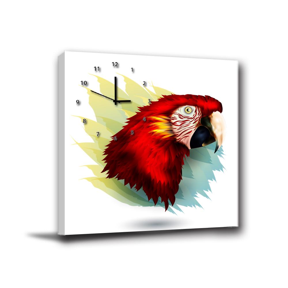 24mama掛畫-單聯無框圖畫藝術家飾品掛畫油畫-大嘴叢林鳥-40x40cm