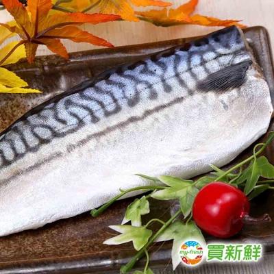 【買新鮮】頂級挪威鯖魚(180g±10%/片)(任選)