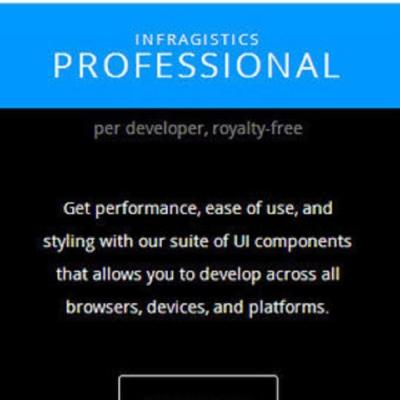 Infragistics Professional 單機授權