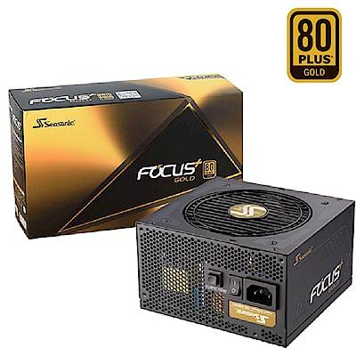 海韻 FOCUS  650w  金牌  全模組  電源供應器