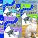 寵物物語 硬石貓砂21lb盒裝共2盒 product thumbnail 1