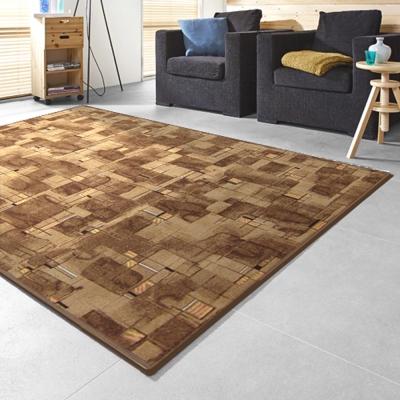 范登伯格 - 朝暘 進口地毯-星辰 (咖) (大款-200x260cm)