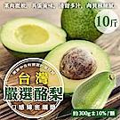 【天天果園】特選新鮮特大顆酪梨 x10台斤