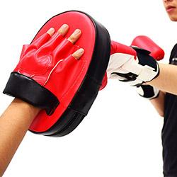 拳擊訓練手靶 / 格鬥手把 (單隻)
