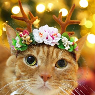 dyy》賣萌寵物貓狗頭飾頭套手工寵物聖誕節鹿角