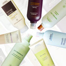AVEDA 專櫃香氛洗髮/護髮/保養任選$1099起