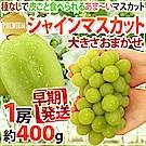 【天天果園】日本長野溫室麝香葡萄(每串400g) x1串禮盒