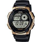 CASIO卡西歐 10年電力世界時間手錶-金框/48.1mm