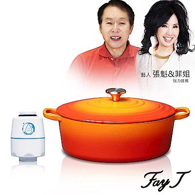 Fay菲姐 頂級鑄鐵琺瑯鍋橢圓鍋29CM(4.7L)贈水洗王環保去油洗淨器