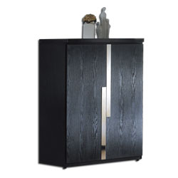 居家生活  艾克斯2.7尺黑色二門鞋櫃