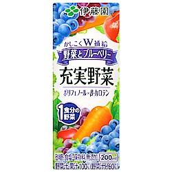 伊藤園 充實野菜汁-綜合藍莓(200ml)
