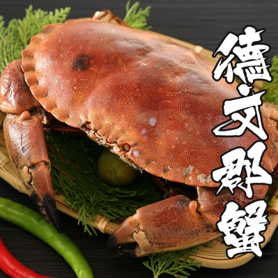 海鮮王 英國巨碩德文郡蟹*2隻 (900g±10%隻)