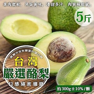 【天天果園】特選新鮮特大顆酪梨 x5台斤