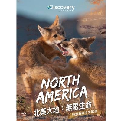 北美大地:無限生命 BD