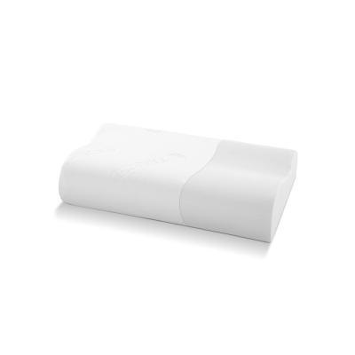 記憶枕 歐美熱銷款 涼感天絲表布 工學型釋壓記憶枕 小尺寸 1入