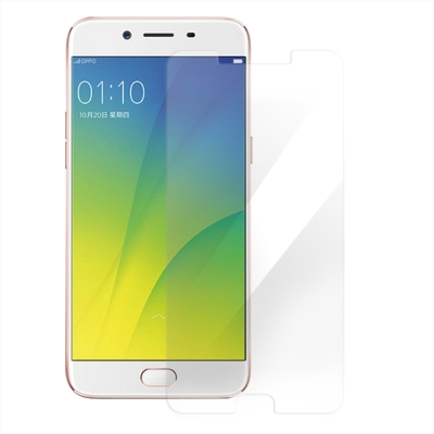 Metal-Slim OPPO R9s Plus 9H鋼化玻璃保護貼