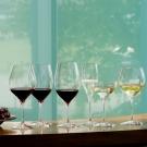 RIEDEL 世界專業酒具領導品牌