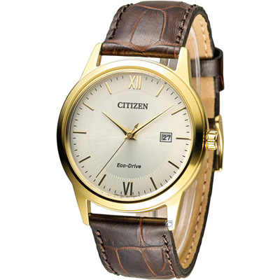 CITIZEN 星辰 光動能復古休閒經典腕錶(AW1232-12A)-銀x金/40mm
