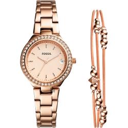 FOSSIL BLANE 美麗女仕晶鑽套錶
