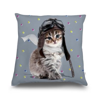 法國數位藝廊-貓貓抱枕/靠墊-貓騎士St Ex-含芯/40x40