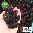 老農手摘 天然野生桑葚果-產地直銷(500公克x6包)